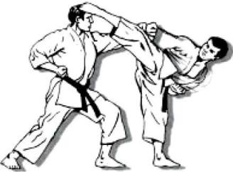 figuras karate