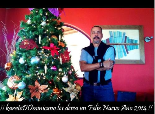 karateDOminicano 2014