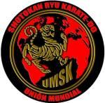 logo umsk